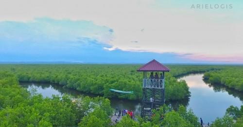 Mercusuar di antara rerimbunan batang mangrove