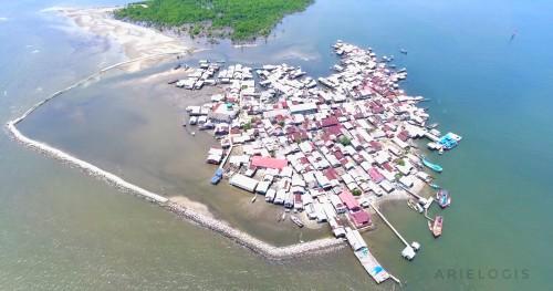 Pusong Telaga Tujuh terancam karena penebangan mangrove